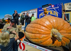 It's Pumpkin Time! This weekend in Half Moon Bay